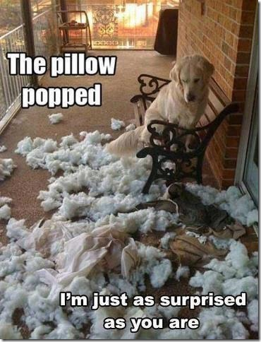 Pillow popped