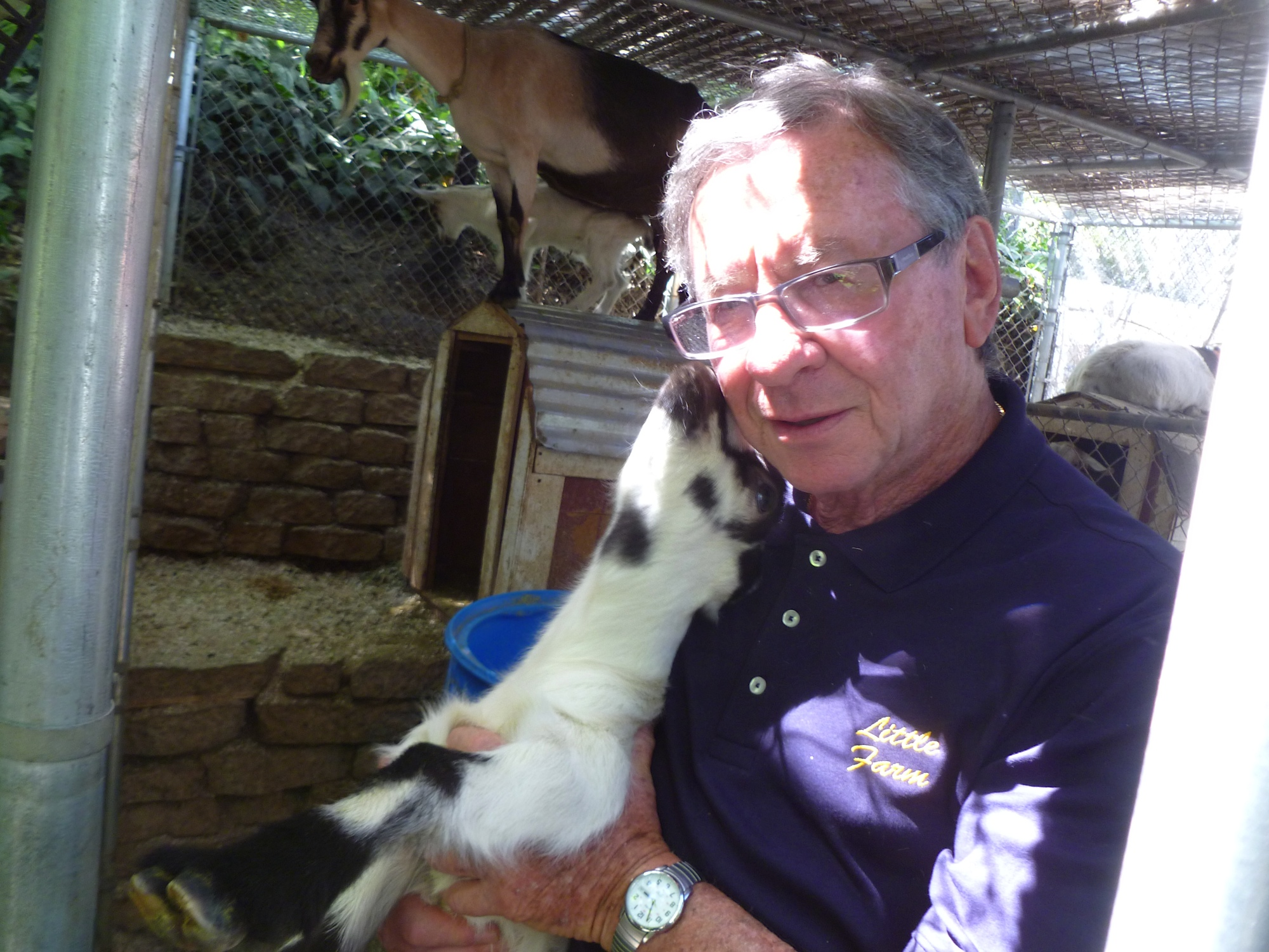 Clive and baby goats kissing April 2013