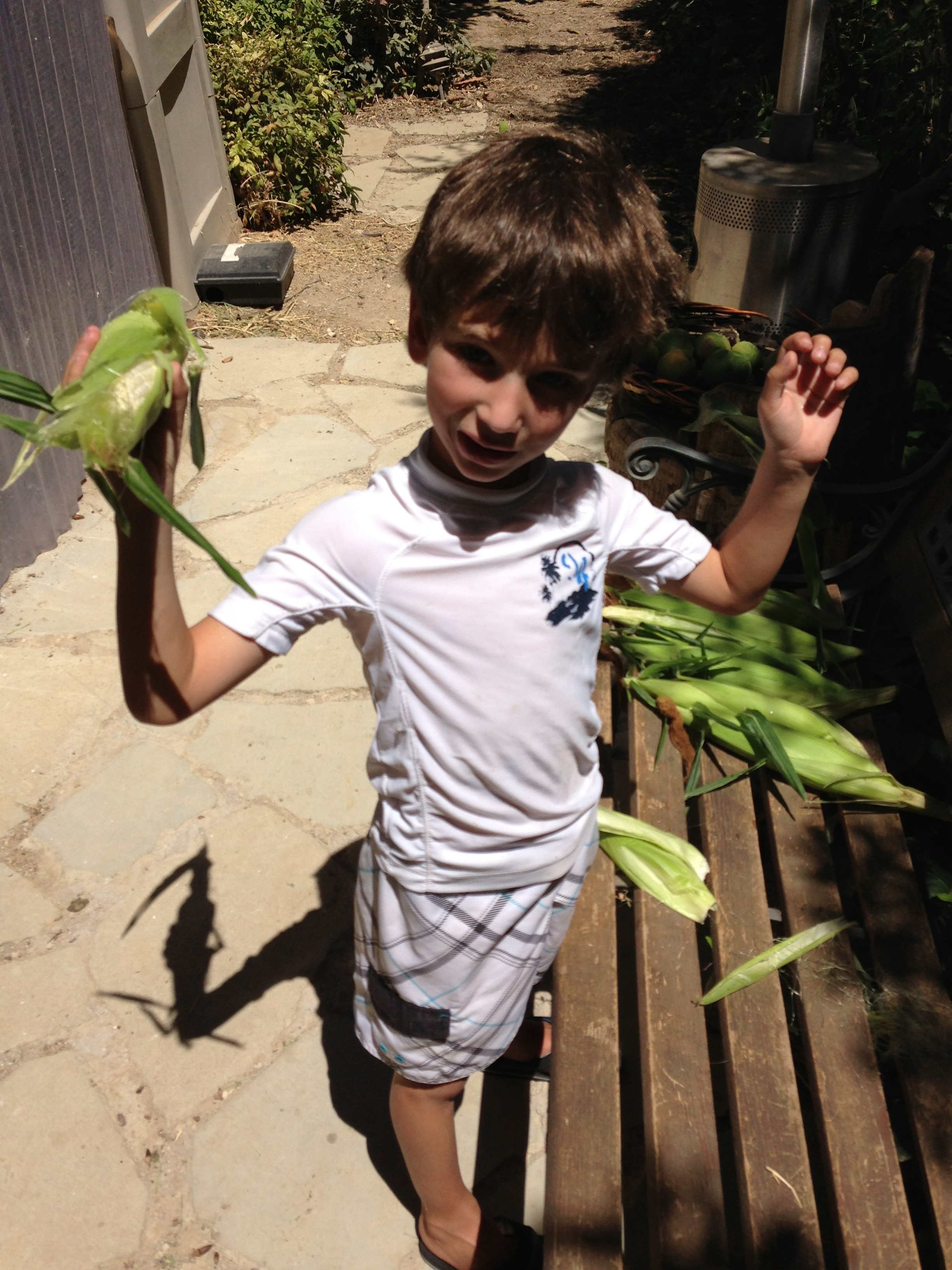 Jack shucking corn Sept 2013