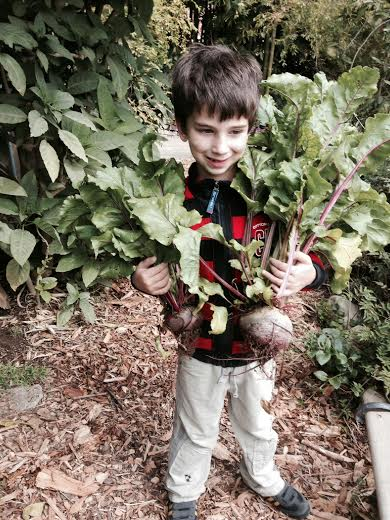 Jack holding beets from Little farm March 2014