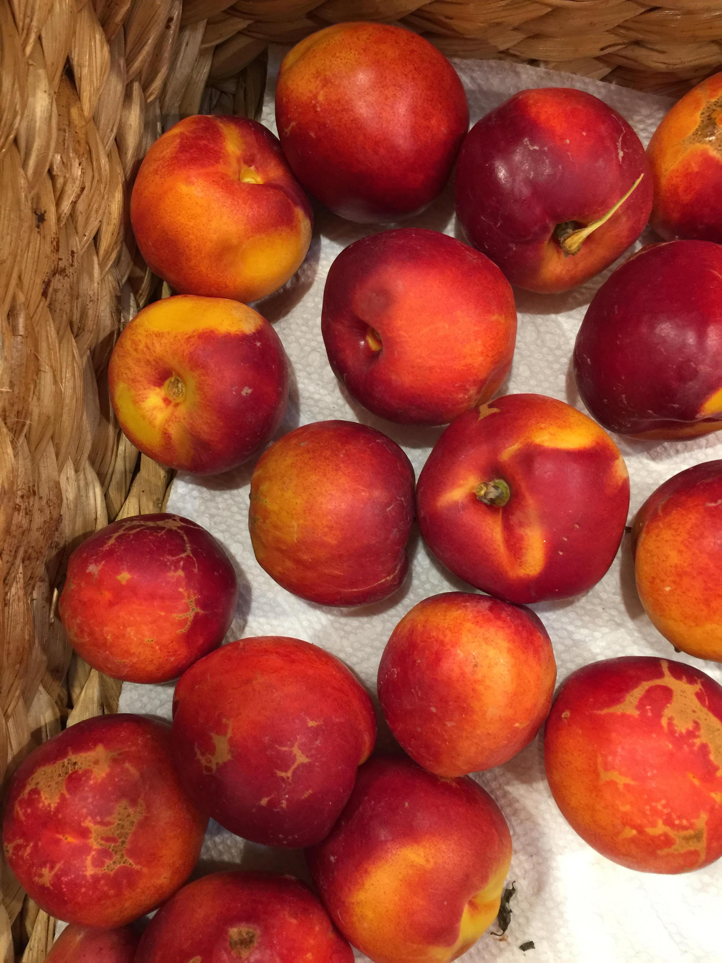 Peaches Little farm