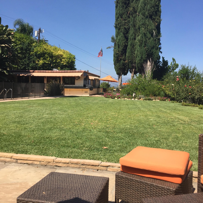 Green back lawn at Little Farm September 2016