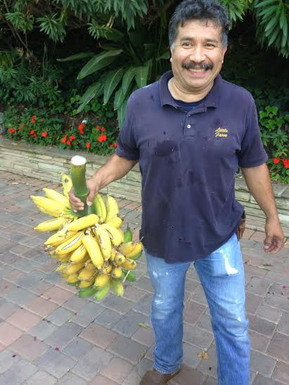 max-with-bananas-little-farm-july-2014